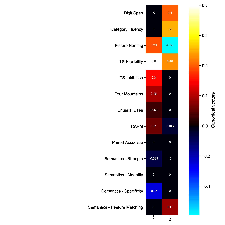 reports/figures/S1-cognitive_task_heatmap.png